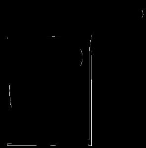 Logo de Carmen Navarro